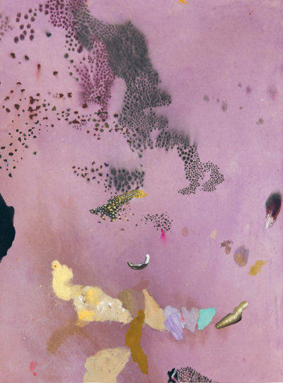 Fragments de paradis de Denis Polge